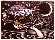 Night Heron (Nychticorax)